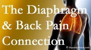 Dr. Le's Chiropractic & Wellness, L.L.C. recognizes the relationship of the diaphragm to the body and spine and back pain.
