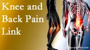 Dr. Le's Chiropractic & Wellness, L.L.C. treats back pain and knee osteoarthritis to help prevent falls.