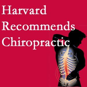 Dr. Le's Chiropractic & Wellness, L.L.C. offers chiropractic care like Harvard recommends.