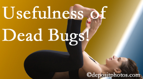 Dr. Le's Chiropractic & Wellness, L.L.C. finds dead bugs quite useful in the healing process of Auburn back pain for many chiropractic patients.