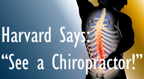 Auburn chiropractic for back pain relief urged by Harvard