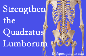 Auburn chiropractic care proposes exercise recommendations to strengthen spine muscles like the quadratus lumborum as the back heals and recovers.